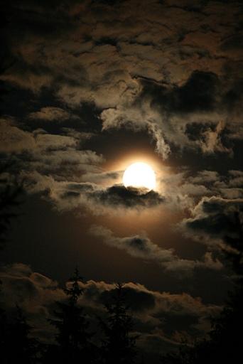 Jaaniöö kuu