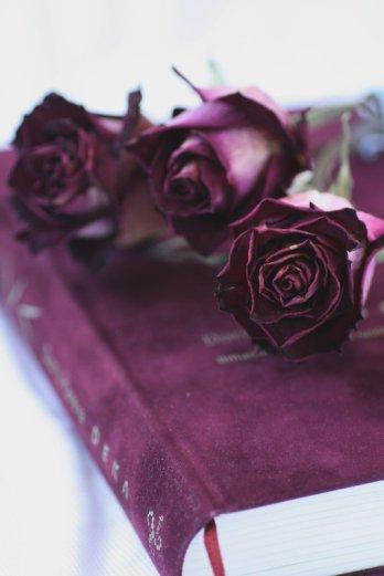 Raamat ja roosid